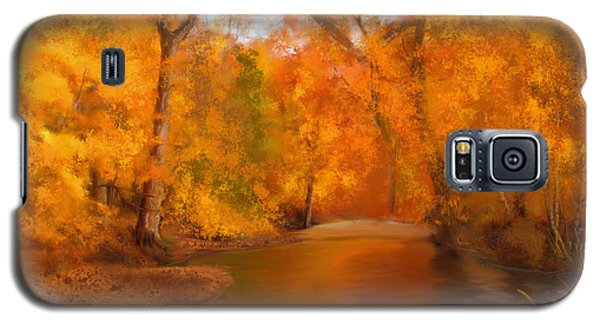 New England Autumn In The Woods Galaxy S5 Case