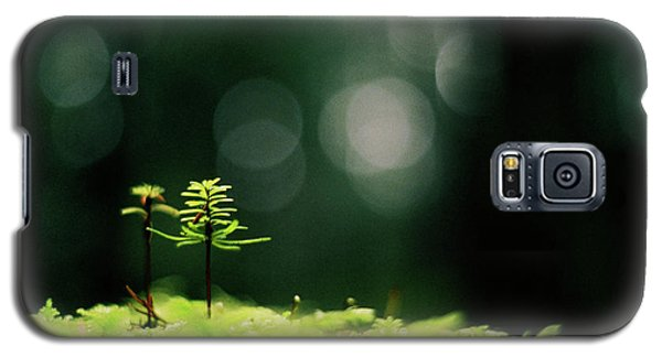 New Forest Galaxy S5 Case by Cathie Douglas