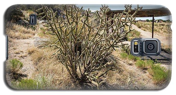 New Mexico Cholla Galaxy S5 Case