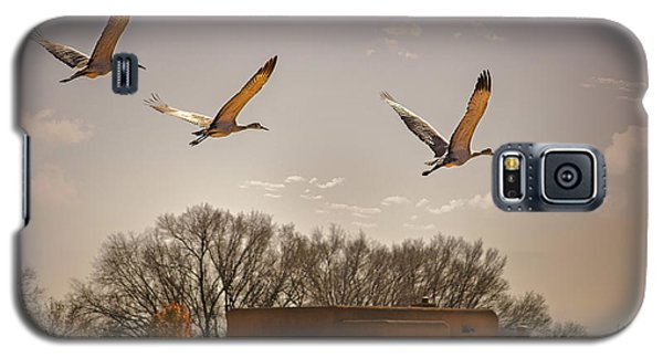 Flight Of The Cranes Galaxy S5 Case