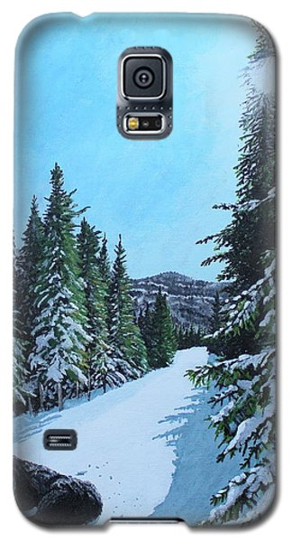 Newfoundland In Labrador II Galaxy S5 Case