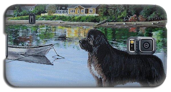Newfoundland In Labrador Galaxy S5 Case