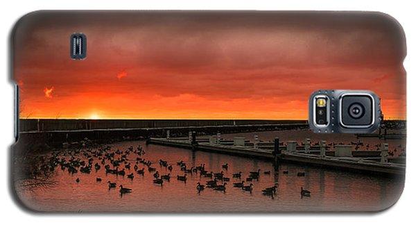 Newport Geese Galaxy S5 Case