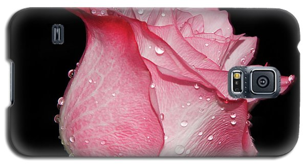 Galaxy S5 Case featuring the photograph Nice Rose by Elvira Ladocki