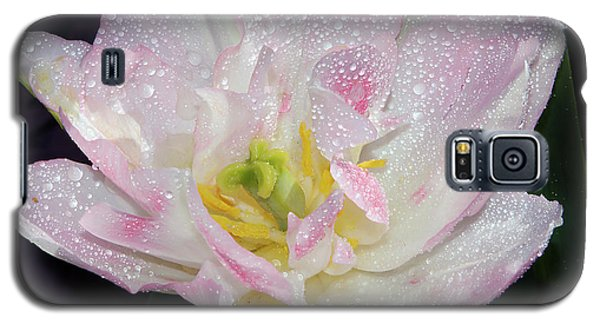 Galaxy S5 Case featuring the photograph Nice Tulip by Elvira Ladocki