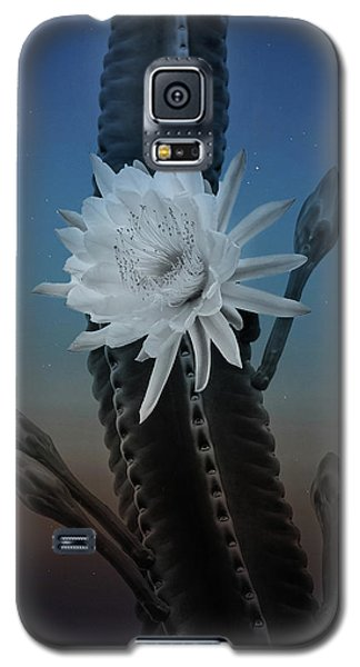 Night Bloom Galaxy S5 Case
