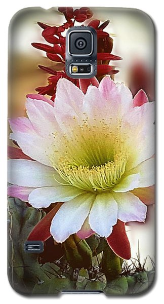 Galaxy S5 Case featuring the photograph Night-blooming Cereus 2 by Marilyn Smith