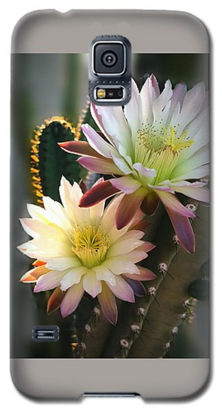 Galaxy S5 Case featuring the photograph Night-blooming Cereus 3 by Marilyn Smith