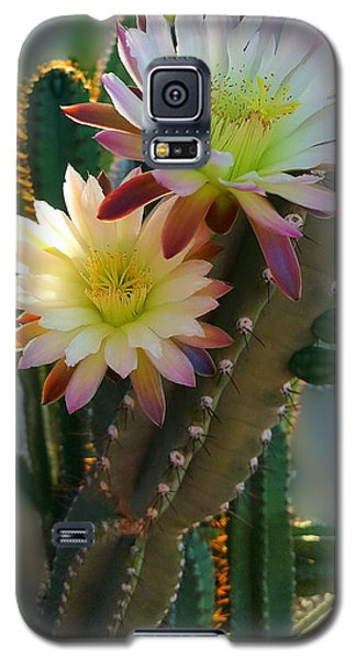 Galaxy S5 Case featuring the photograph Night-blooming Cereus 4 by Marilyn Smith