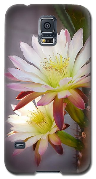 Galaxy S5 Case featuring the photograph Night Blooming Cereus by Marilyn Smith