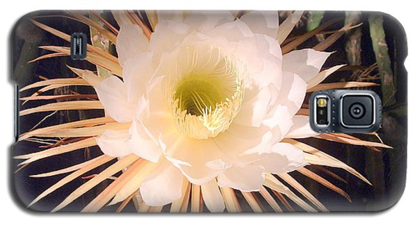 Night-blooming Cereus Galaxy S5 Case