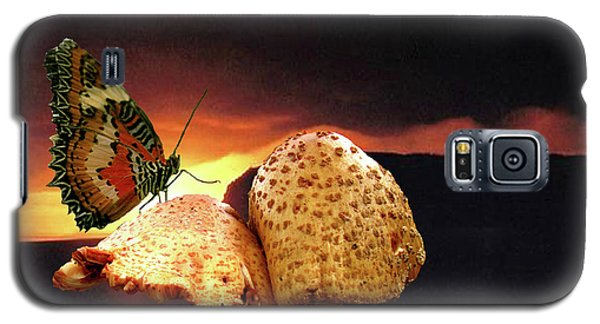 Galaxy S5 Case featuring the photograph Night Fall by Donna Brown