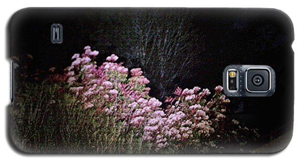 Galaxy S5 Case featuring the photograph Night Flowers by YoMamaBird Rhonda