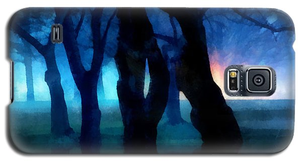 Night Fog In A City Park Galaxy S5 Case by Francesa Miller