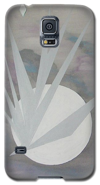 Night Hawke 2 Galaxy S5 Case by J R Seymour