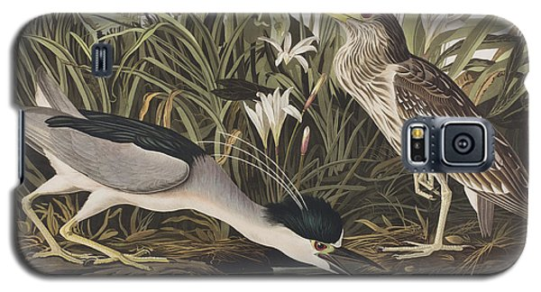 Night Heron Or Qua Bird Galaxy S5 Case by John James Audubon