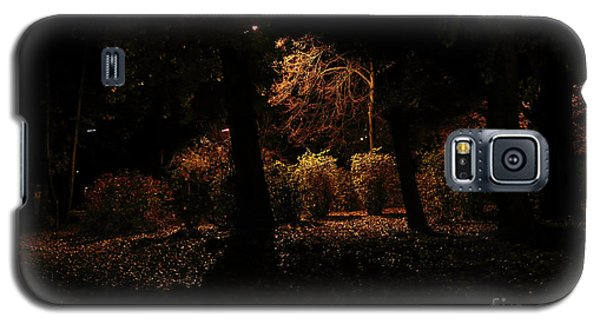 Night In The Park  Galaxy S5 Case