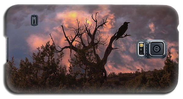 Night Of The Raven Galaxy S5 Case
