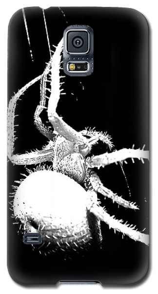 Night Spider Galaxy S5 Case