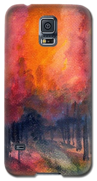Night Time Among The Maples Galaxy S5 Case