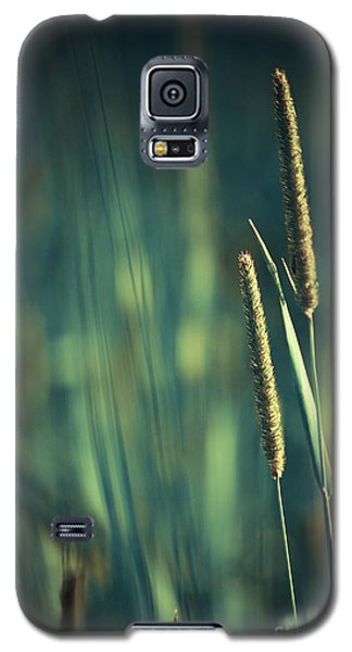 Night Whispers Galaxy S5 Case