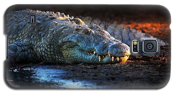 Nile Crocodile On Riverbank-1 Galaxy S5 Case by Johan Swanepoel