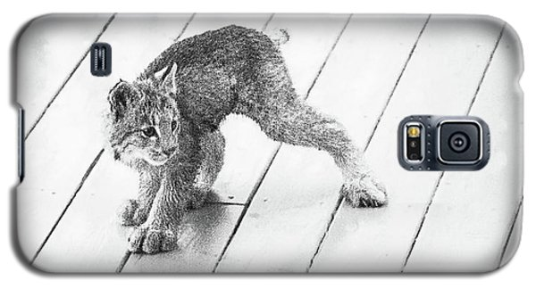 Ninja Lynx Kitty Bw Galaxy S5 Case