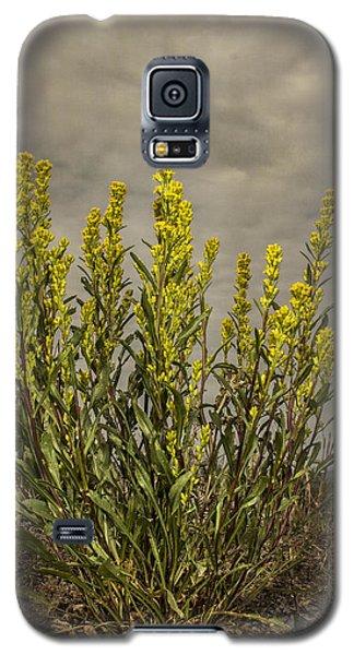 Nizina River Goldenrod Galaxy S5 Case