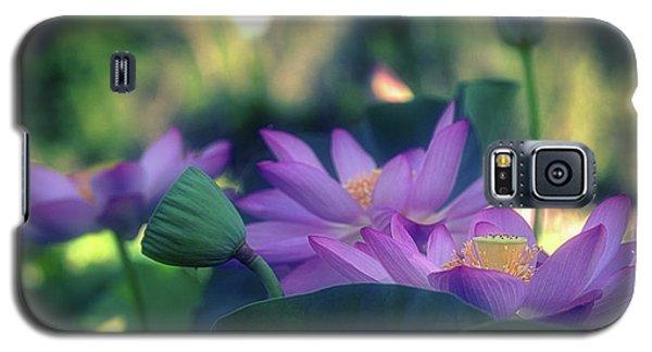 No Mud, No Lotus Galaxy S5 Case
