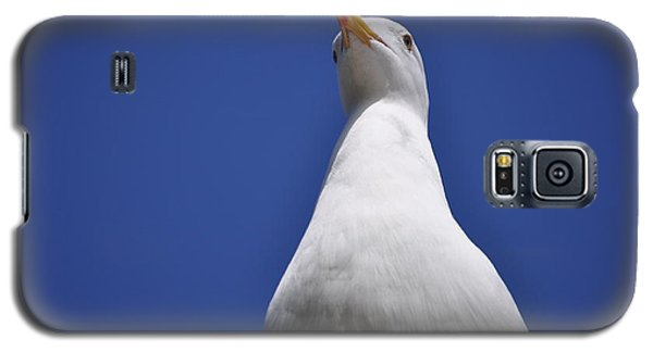 Noble Galaxy S5 Case