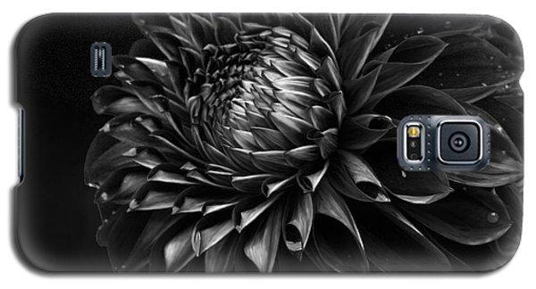 Noir Beauty Galaxy S5 Case