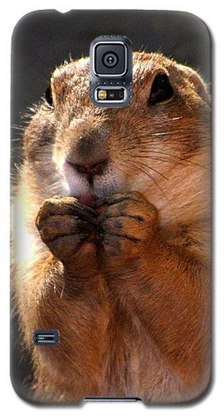 Snacking Prairie Dog Galaxy S5 Case