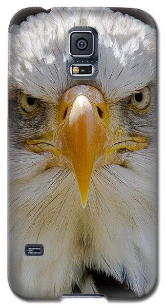 North American Bald Eagle  Galaxy S5 Case