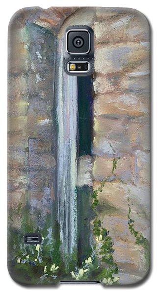 North Hill Alley Door Galaxy S5 Case