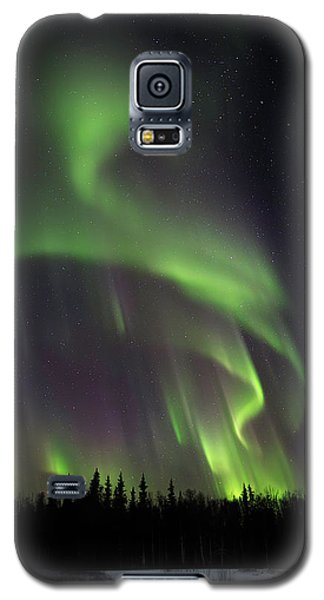 Northern Delight Galaxy S5 Case