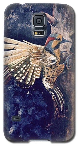 Northern Filicker Galaxy S5 Case