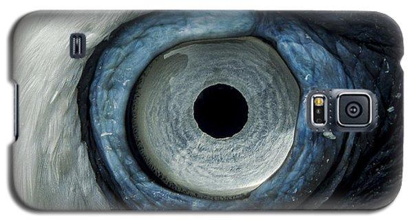Northern Gannet Eye Galaxy S5 Case