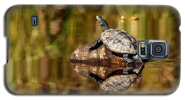 Northern Map Turtle Galaxy S5 Case by Debbie Oppermann