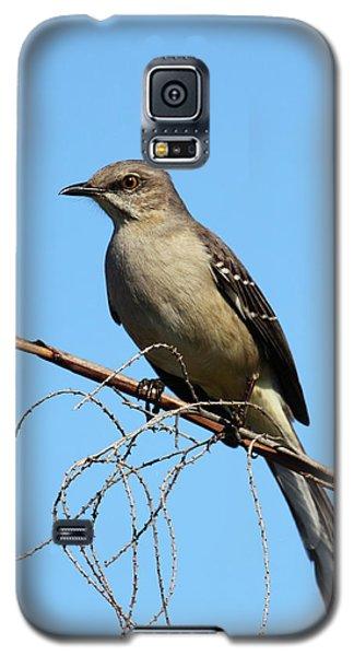 Mockingbird Galaxy S5 Case - Northern Mockingbird by Bruce J Robinson