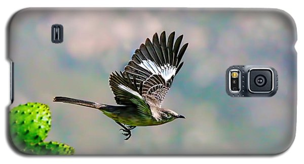 Northern Mockingbird Flying Galaxy S5 Case by Dan Redmon