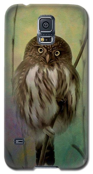 Northern Pygmy Owl  Galaxy S5 Case