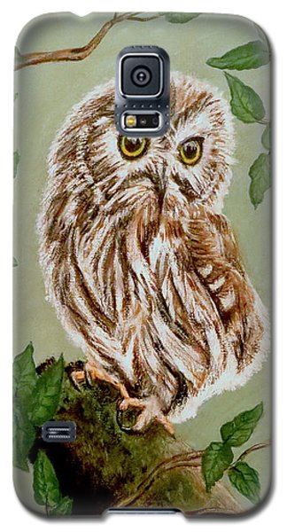 Northern Saw-whet Owl Galaxy S5 Case