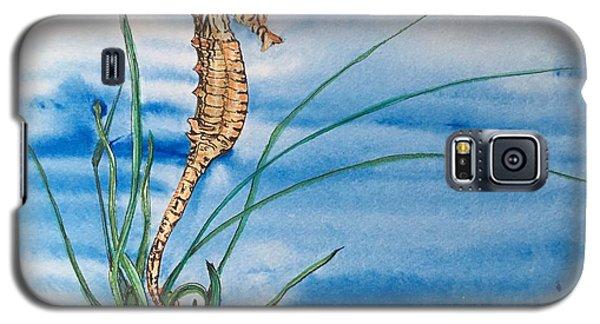 Northern Seahorse Galaxy S5 Case