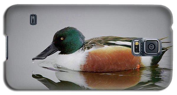 Northern Shoveler Galaxy S5 Case