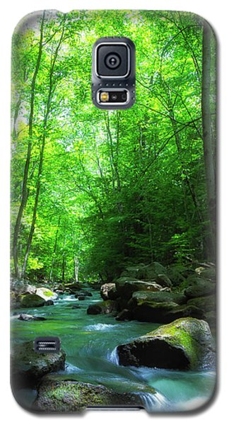 Northwood Brook Galaxy S5 Case