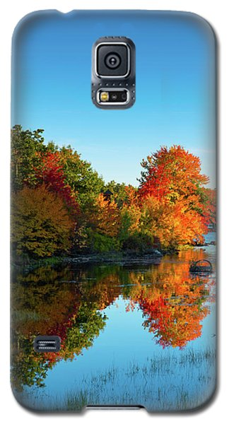Northwood Lake Autumn Galaxy S5 Case