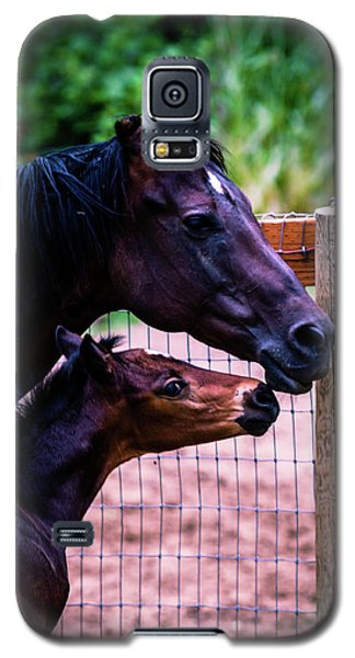 Nose To Nose Galaxy S5 Case