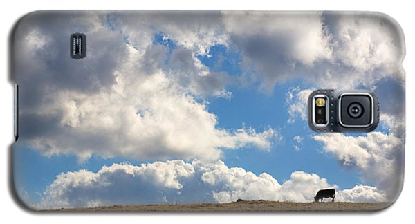 Not A Cow In The Sky Galaxy S5 Case