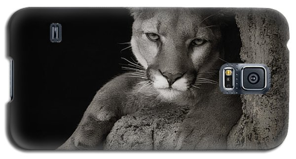 Not A Happy Cat Galaxy S5 Case by Elaine Malott