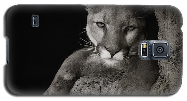 Not A Happy Cat Galaxy S5 Case